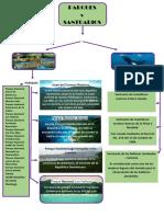 MAPA CONCEPTUAL Parques y santuarios NACIONALES.pdf