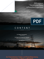 Detailed Tower and Powerline Inspection.pdf