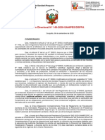 148-2020-SANIPES-DSFPA