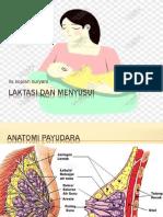 laktasi dan menyusui.pdf