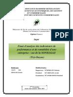 Memoire essai d'analyse des indicateurs de performance et de rentabilité d'une entreprise.pdf