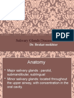 14salivary gland physo+anatomy