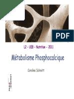 phosphocalcique