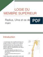 2_ostéologie_du_membre_supérieur_ii