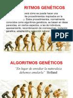 C7 ALGORITMOS GENETICOS