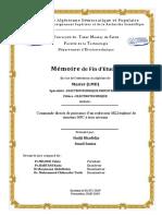 pfe2019.pdf