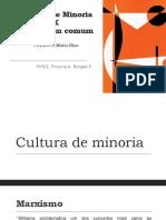 Cultura de minoria X cultura em comum