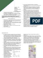 Digestão e absorção de glicídios (2)