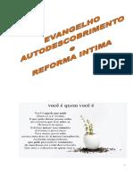 _Espiritismo_#_José_L_Maio_Evangelho,_autodescobrimento_e_Reforma
