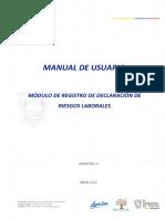 Manual - Registro de Declaracion de Riesgos