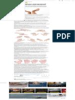 10 эффективных упражнений для пальцев рук при артрозе.pdf