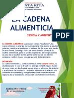 LA CADENA ALIMENTICIA 6TO DE PRIMARIA.pptx
