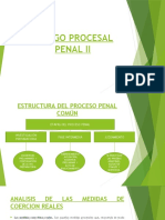 SEMANA 2 - ESTRUCTURA DEL PROCESO PENAL COMUN