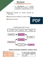 16_ Contrazione muscolare (2).pdf