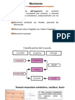 16_ Contrazione muscolare (1).pdf