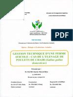 MEMOIRE_636933599075924673.pdf