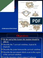 04 cervical spines.ppt