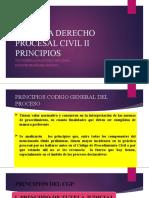 6. PRINCIPIOS DEL DERECHO PROCESAL
