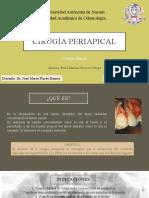 EXPOSICIÓN DE CIRUGÍA PERIAPICAL