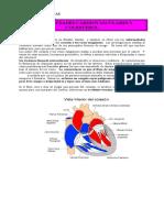 Dieta Cardiovascular.doc