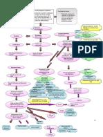 Pathophysiology AML diagram