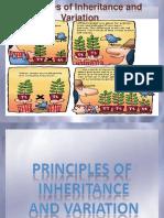 principlesofinheritance-140428030815-phpapp01