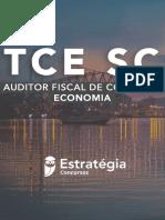 E-book-Auditor-Economia-TCE-SC-1