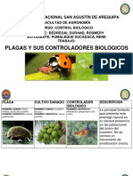 Plagas y Sus Controladores Biológicos (Pumaleque Sucasaca Rene)