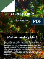 celulasgliales-170408165157