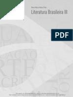 Literatura brasileira e movimentos / Literatura contemporânea brasileira