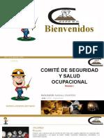 COMITÉ DE SEGURIDAD Y SALUD OCUPACIONAL_MARSA