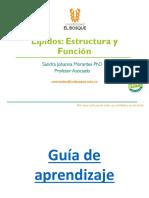 Tema_4_ Estructura y Función de Lípidos 2020_2
