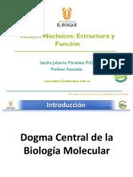 _Tema__ 5_Estructura y Función de Ácidos nucléicos 2020_2.pdf
