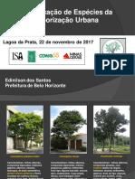 identificacao_de_especies_da_arborizacao_urbana