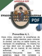 14 Cap. XIV EVALUACION DE ALTERNATIVAS.ppt