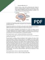 Transcrição Hidrocefalia
