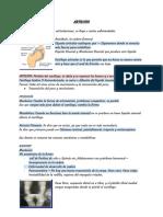 Artrosis .pdf