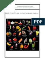 cultivo del chile
