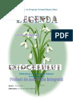 LORENA PROIECT (1)