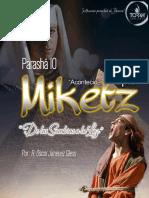 "Parashá #10 ""Miketz"" Instituto Toráh®"