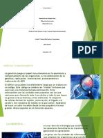 ACT. 7 GENETICA Y COMPORTAMIENTO.pptx