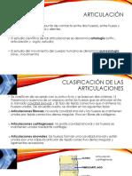 CLASIFICACION DE ARTICULACIONES