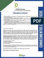 03_Conhecimentos_Especificos.pdf