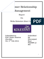 Wella- Customer Relationship Management