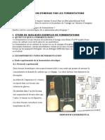 cours fermentation 1