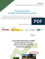Presentacion resumen de Guia metodologica.pdf