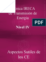 Nivel IV