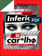 Inferior é o Car_lhø - Angela Saini.pdf
