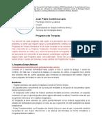 Programa Terapia Ulm.docx