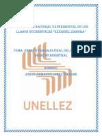 EnsayoFinal.Jorge Lopez.MII.Sección02